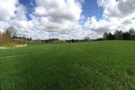 Baugebiet Niederhagen