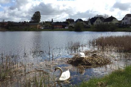 Baugebiet Niederhagen - Satow